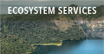 Ecosystem/ services